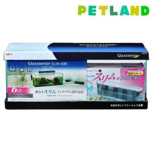 グラステリアスリム600 セット ( 1セット )/ グラステリア