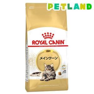 ロイヤルカナン FBN  メインクーン 成猫用 ( 2kg )/ ロイヤルカナン(ROYAL CANIN) ( キャットフード ドライ )