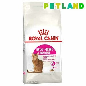 ロイヤルカナン フィーラインヘルスニュートリション セイバー エクシジェント ( 2kg )/ ロイヤルカナン(ROYAL CANIN) ( キャットフード ドライ )