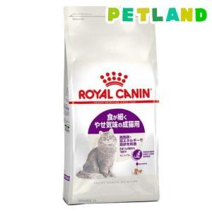 ロイヤルカナン フィーラインヘルスニュートリション センシブル ( 2kg )/ ロイヤルカナン(ROYAL CANIN) ( キャットフード ドライ )