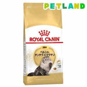 ロイヤルカナン FBN ペルシャ・チンチラ・ヒマラヤン 成猫用 ( 2kg )/ ロイヤルカナン(ROYAL CANIN) ( キャットフード ドライ )