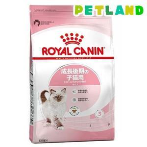 ロイヤルカナン フィーラインヘルスニュートリション キトン ( 10kg )/ ロイヤルカナン(ROYAL CANIN) ( キャットフード ドライ 子猫 仔猫 )