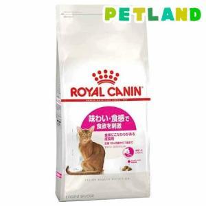 ロイヤルカナン フィーラインヘルスニュートリション セイバー エクシジェント ( 10Kg )/ ロイヤルカナン(ROYAL CANIN) ( キャットフード ドライ )