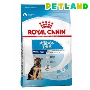 ロイヤルカナン サイズヘルスニュートリション マキシ パピー ( 15kg )/ ロイヤルカナン(ROYAL CANIN) ( ドッグフード )|petland
