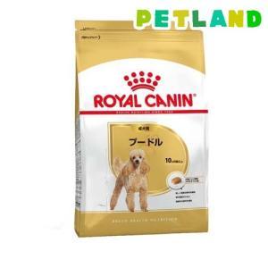 ロイヤルカナン ブリードヘルスニュートリション プードル 成犬用 ( 3Kg )/ ロイヤルカナン(ROYAL CANIN) petland
