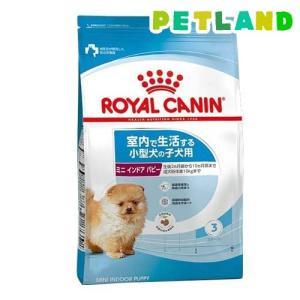 ロイヤルカナン サイズ ヘルス ニュートリション ミニインドア パピー ( 2kg )/ ロイヤルカナン(ROYAL CANIN) ( ドッグフード )|petland