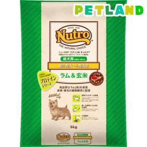 ナチュラルチョイス ラム&玄米 超小型犬〜小型犬用 成犬用 ( 6kg )/ ナチュラルチョイス(NATURAL CHOICE)