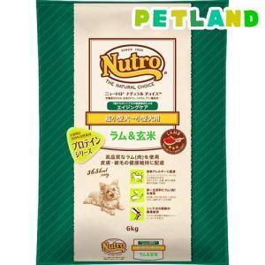 ニュートロ ナチュラルチョイス 超小型犬〜小型犬用 エイジングケア ラム&玄米 ( 6kg )/ ニュートロ
