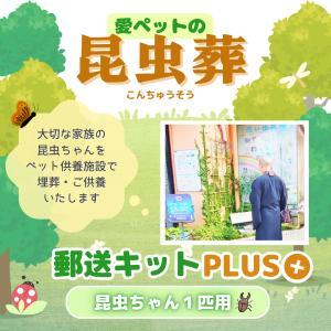 愛ペット 昆虫葬 郵送キットPLUS(埋葬・ご供養費・郵送料込み)|petmemorial