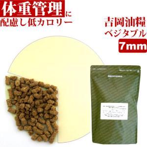 吉岡油糧×ペットネクスト 無添加オリジナルドッグフード ベジタブル・7mm・1kg  ドライフード|petnext