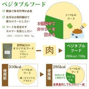吉岡油糧×ペットネクスト 無添加オリジナルドッグフード ベジタブル・フレーク・1kg  ドライフード petnext 02