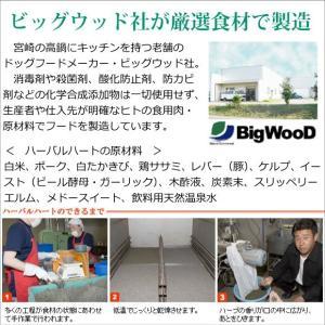 ビッグウッド ハーバルハート 5kg=2.5kg袋×2 炭とハーブ配合のドッグフード|petnext|04