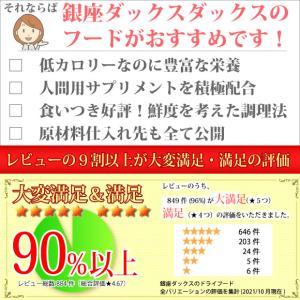 銀座ダックスダックス DD ホームメイドドッグフード スーパーコンディション 粒タイプ 500g|petnext|03
