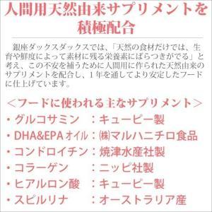 銀座ダックスダックス DD ホームメイドドッグフード スーパーコンディション 粒タイプ 500g|petnext|06