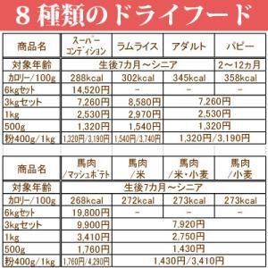 銀座ダックスダックス DD ホームメイドドッグフード スーパーコンディション 粒タイプ 500g|petnext|08
