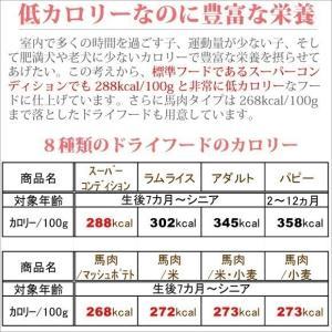 銀座ダックスダックス DD ホームメイドドッグフード アダルト 粒タイプ 1kg|petnext|05