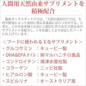 銀座ダックスダックス DD ホームメイドドッグフード アダルト 粒タイプ 1kg|petnext|06