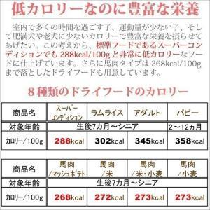 銀座ダックスダックス DD ホームメイドドッグフード 馬肉フード(馬肉/米) 粒タイプ 1kg|petnext|05