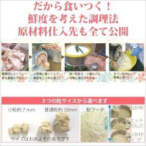 銀座ダックスダックス DD ホームメイドドッグフード 馬肉フード(馬肉/マッシュポテト) 粒タイプ 1kg petnext 07