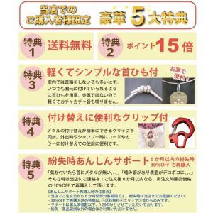 5大特典付 カタンドッグメタル ノミ・ダニを寄せ付けない 身に付けるだけ 紛失時あんしんサポート付|petnext|02