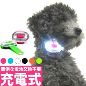 【箱崩しメール便で送料無料】【代引き時別途送料加算】マトリックスLED 犬用  MATRIX ULTRA LED MAX-MOLLY|petnext