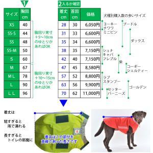イージーレイン 【Mサイズ】 ウォームハートカンパニー(WHCY)|petnext|08