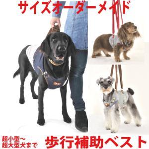 犬 介護用 歩行補助 ハーネス 小型犬 中型犬 大型犬 体型に合わせ オーダーメイド 日本製 アシストベスト ウォームハートカンパニー WHCY 老犬 シニア犬 国産|petnext