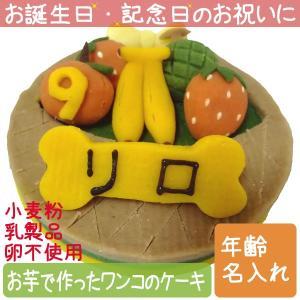 犬用ケーキ Lovina(ロビナ) フルーツバスケットケーキ お誕生日に プレゼントに petnext