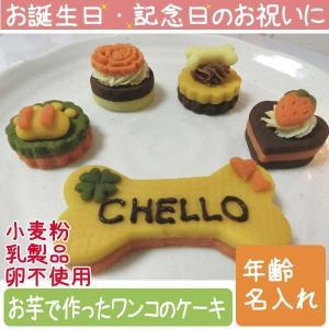 犬用ケーキ Lovina(ロビナ) 名いれプチケーキ5種セット  お誕生日に プレゼントに|petnext