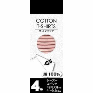 Tシャツ ボーダーオレンジ    4号|petslove