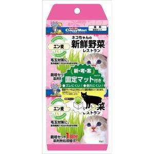 ネコちゃんの新鮮野菜レストラン 2個パック petslove