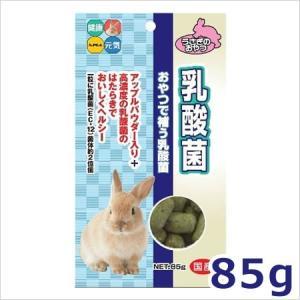 ★【12月のお買い得商品】ハイペット 乳酸菌 85g
