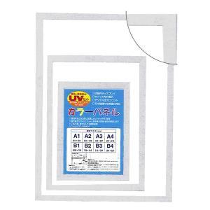 <title>〔パネルフレーム〕MDFフレーム UVカット付 カラーポスターフレームA1 841×594mm 信憑 ホワイト</title>