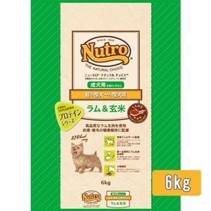 ナチュラルチョイス 超小型犬〜小型犬用 成犬用 ラム&玄米(6kg)