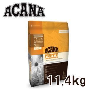 アカナ パピーラージブリード 11.4kg