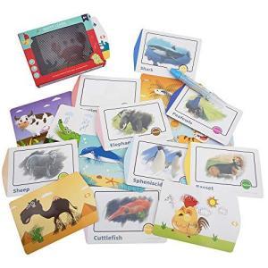 WISESTAR フラッシュカード 英語単語 3Dマジックボックス 16種類セット カードゲーム お絵かき 水で描く おもちゃ マジックペン 野生動物 pfgo