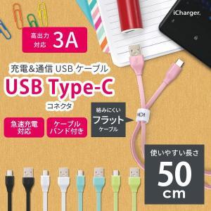 iCharger USB Type-C USB Type-A コネクタ USBフラットケーブル 50cm pg-a