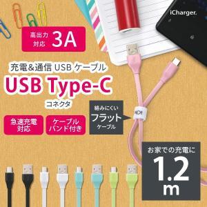 iCharger USB Type-C USB Type-A コネクタ USBフラットケーブル 1.2m pg-a