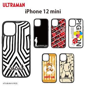 (受注生産)iPhone 12 mini用 アクリルケース pg-a