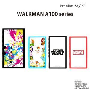 WALKMAN NW-A100用 ガラスタフケース|pg-a
