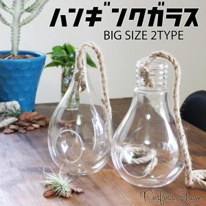 大きいサイズの ハンギング ガラス 2タイプから選べます ロープ付き エアプランツ 観葉植物 多肉植物 オブジェ アンティーク インテリア おしゃれな|pg869