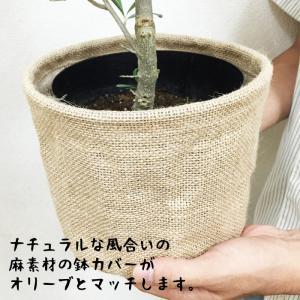 オリーブ ナチュラルな麻素材 送料無料 鉢カバ...の詳細画像3