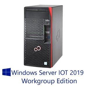 【WS IOT2019 WG】富士通 PRIMERGY TX1310 M3 16GB 2TBx2モデル(Xeon E3-1225v6/タワー)