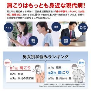 ファイテン RAKUWA磁気チタンネックレス BULLET phiten 07