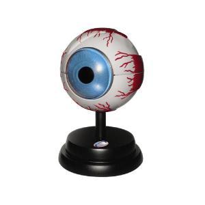 EASTCOLIGHT#29962 立体模型  眼球|photo-station