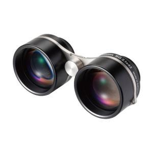 ビクセン 星座観察用双眼鏡 SG 2.1×42  No.19172-7 photo-station