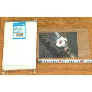 【グランドキャビネ】100枚 <ショーレックス/写真袋> 無地 photoland