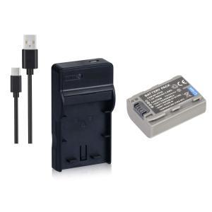定形外 DC04 USB型充電器BC-TRV/BC-TRP+ソニー NP-FP50互換バッテリーのセット