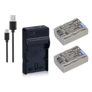 定形外 DC04 USB型充電器BC-TRV/BC-TRP+ソニー NP-FP50互換バッテリー2個の3点セット