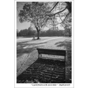公園のベンチと影モノクロポストカード photoroom-g